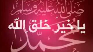نغمه حبيبنا محمد محمود المصرى