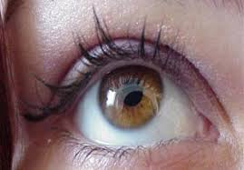 نظارة جديدة تحرك عينيك نيابة